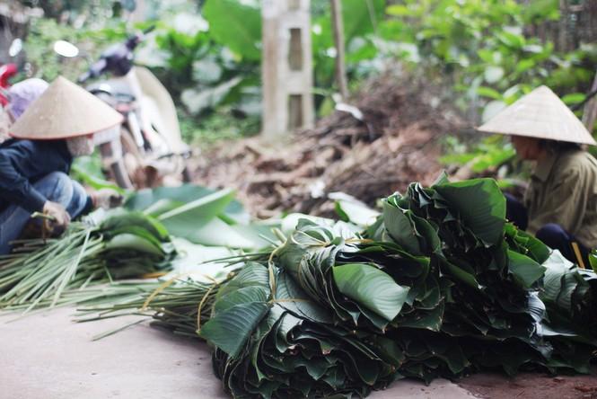 'Đột nhập' làng lá dong lớn nhất Hà thành vào giáp Tết - ảnh 14