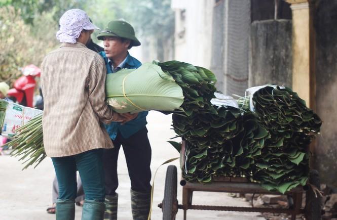 'Đột nhập' làng lá dong lớn nhất Hà thành vào giáp Tết - ảnh 9