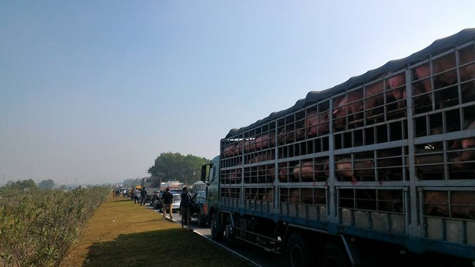 Lật xe tải, cao tốc Hà Nội  - Thái Nguyên ùn gần 10km  - ảnh 1