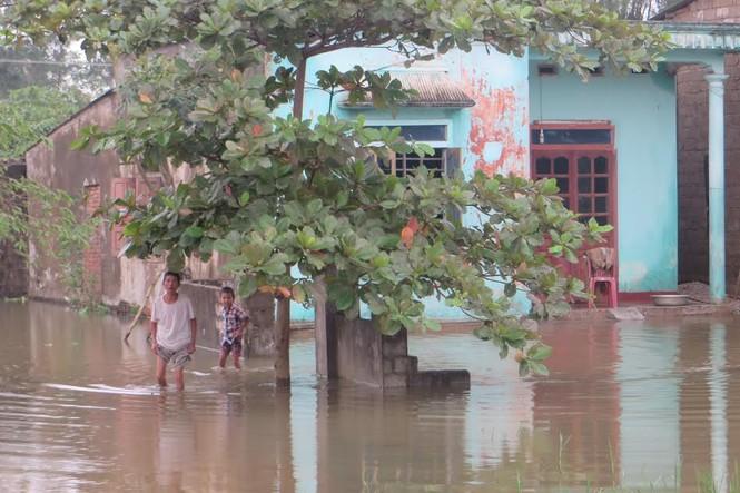 Nghệ An: Hơn 11.000 dân bị cô lập do nước sông Lam dâng cao - ảnh 1