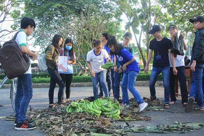 """Đông đảo sinh viên ra tay """"giải cứu chuối"""" giúp người dân Trảng Bom - ảnh 5"""