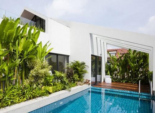 Bể bơi trên nóc nhà 3 tầng của nhà giàu Sài Gòn - ảnh 1