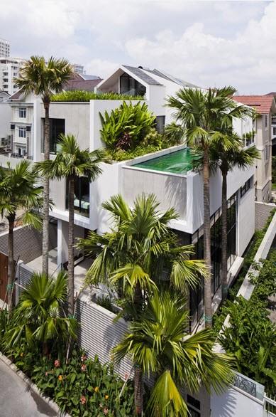 Bể bơi trên nóc nhà 3 tầng của nhà giàu Sài Gòn - ảnh 2