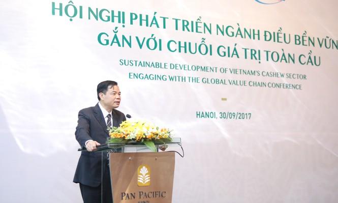 'Gỡ rối' ngành điều Việt Nam và tham vọng 3 tỷ USD - ảnh 1