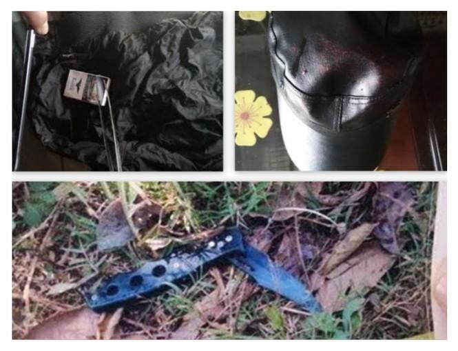Hai nạn nhân sống sót trong vụ thảm án được bảo vệ nghiêm ngặt - ảnh 1