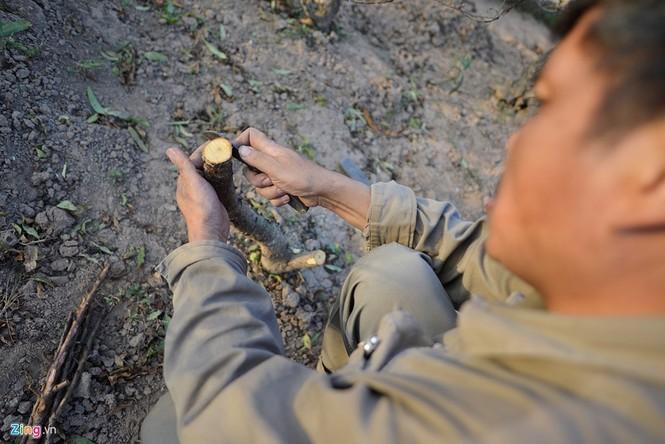 Cận cảnh nghệ nhân dùng điều hòa ủ đào quý - ảnh 11