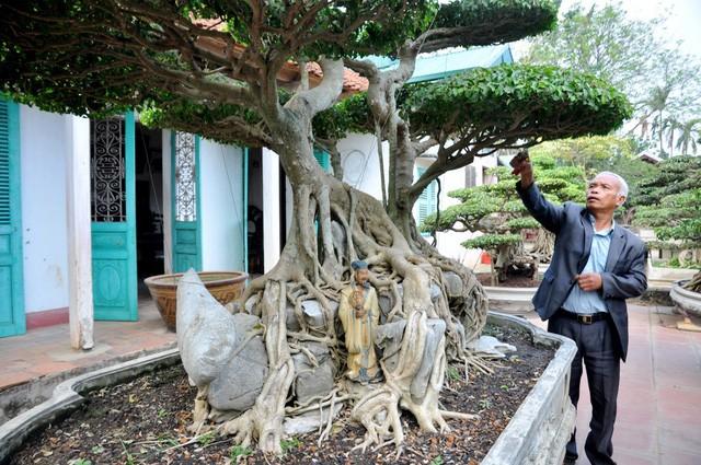 Vườn cảnh tiền tỷ của lão nông chơi cây nổi tiếng Hà thành - ảnh 10