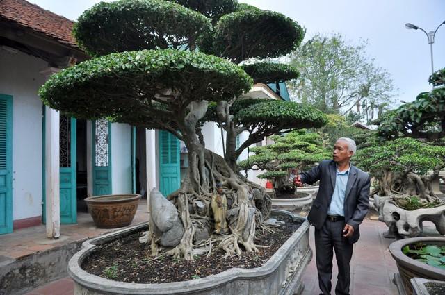 Vườn cảnh tiền tỷ của lão nông chơi cây nổi tiếng Hà thành - ảnh 1