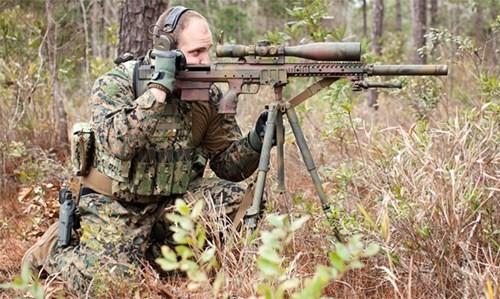Tận thấy những kỷ lục bắn tỉa của quân đội Mỹ, Anh - ảnh 3