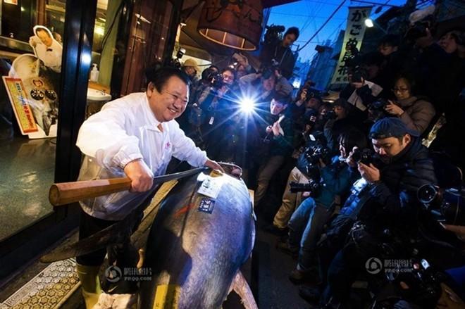 Con cá ngừ 180kg trúng đấu giá 750 triệu đồng - ảnh 5