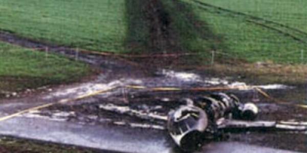 Những tai nạn máy bay do chim va vào - ảnh 2