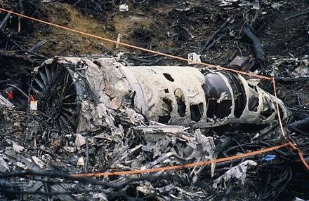 Những tai nạn máy bay do chim va vào - ảnh 3