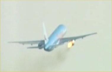 Những tai nạn máy bay do chim va vào - ảnh 4