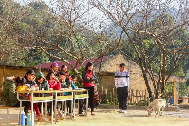 Trường học vùng cao bừng sáng bởi sắc đào - ảnh 3