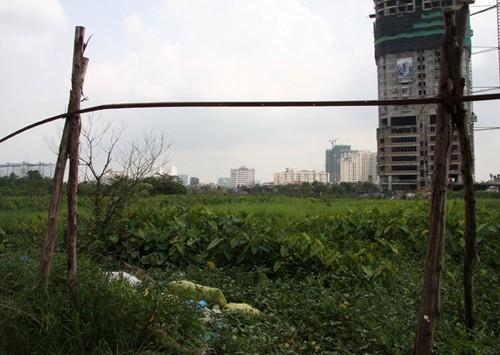 Bức tranh bất động sản màu xám ở phía Tây Hà Nội - ảnh 2