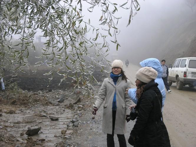 Đội mưa rét lên Sa Pa ngắm băng tuyết - ảnh 3