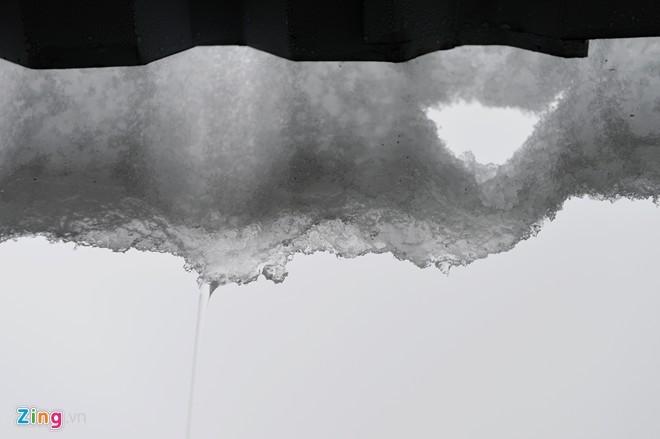 10 hình ảnh ấn tượng về băng tuyết Sa Pa - ảnh 6