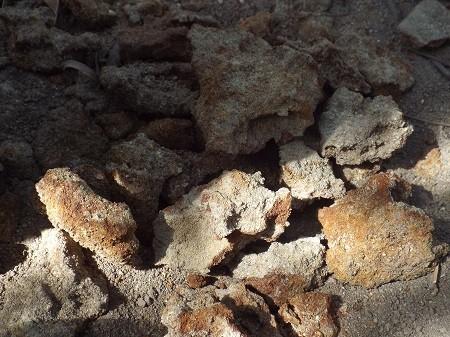 Hố chôn người tập thể được phát hiện như thế nào? - ảnh 3