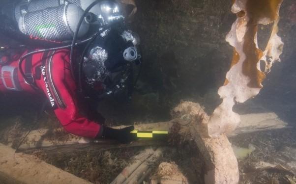 Cận cảnh xác tàu thám hiểm Bắc Cực mất tích năm 1845 - ảnh 2