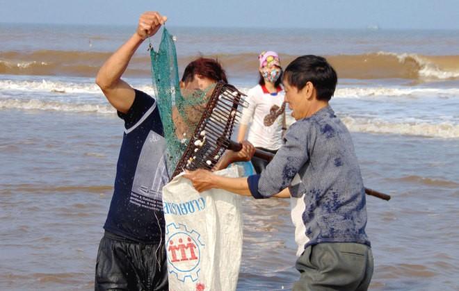 [ẢNH] Người dân ở Hà Tĩnh đổ ra biển vớt sò lông - ảnh 4