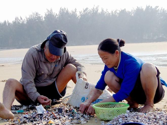 [ẢNH] Người dân ở Hà Tĩnh đổ ra biển vớt sò lông - ảnh 5
