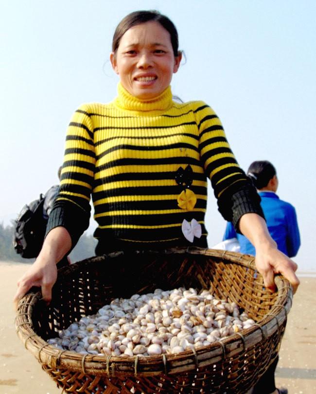 [ẢNH] Người dân ở Hà Tĩnh đổ ra biển vớt sò lông - ảnh 7