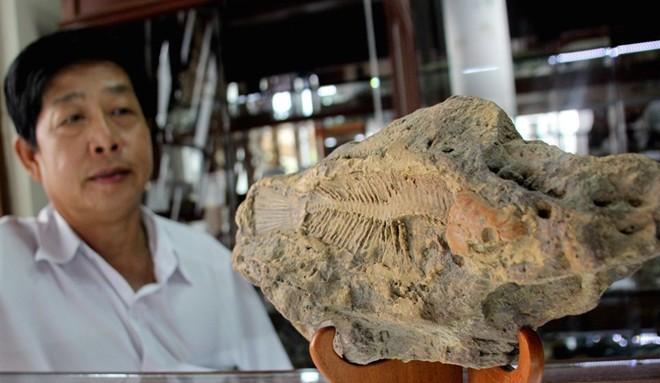 Bộ sưu tập đá tiền tỷ của đại gia Đồng Nai - ảnh 8