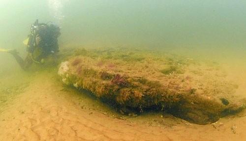 Dấu vết khu rừng tiền sử 10.000 năm dưới biển - ảnh 3