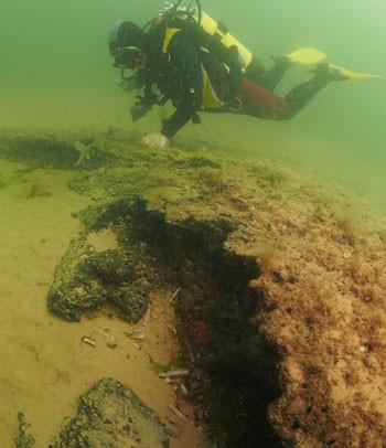 Dấu vết khu rừng tiền sử 10.000 năm dưới biển - ảnh 5