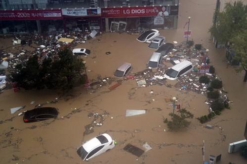 Nước lũ như sóng thần tấn công Hàn Quốc trong bão Chaba - ảnh 1