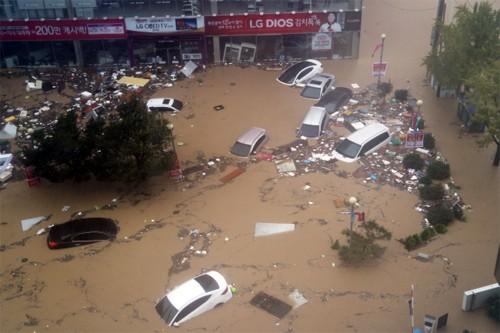 Hàng loạt ôtô bị cuốn trôi xuống sông Hàn Quốc - ảnh 1