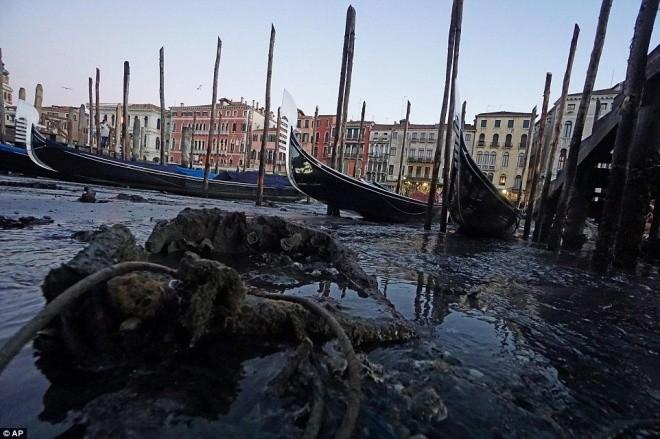Thành phố nổi Venice có thể biến mất vì cạn nước - ảnh 10