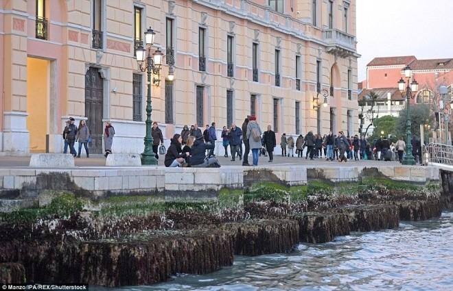 Thành phố nổi Venice có thể biến mất vì cạn nước - ảnh 11