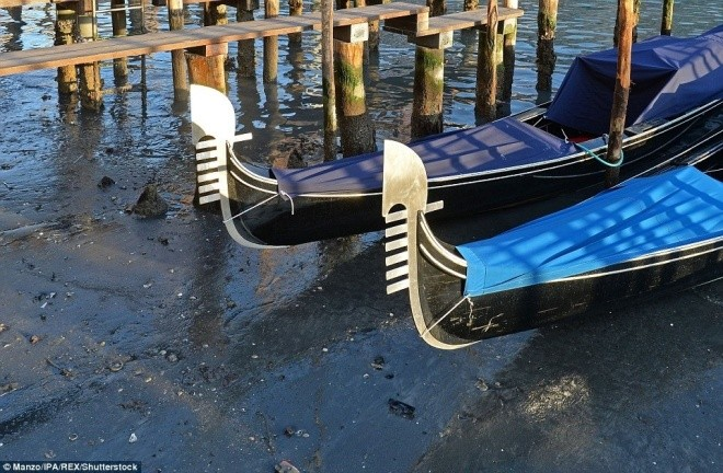 Thành phố nổi Venice có thể biến mất vì cạn nước - ảnh 5