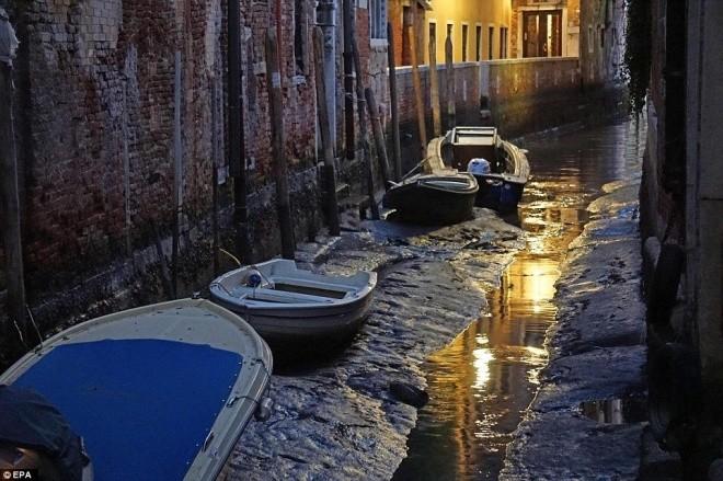 Thành phố nổi Venice có thể biến mất vì cạn nước - ảnh 7