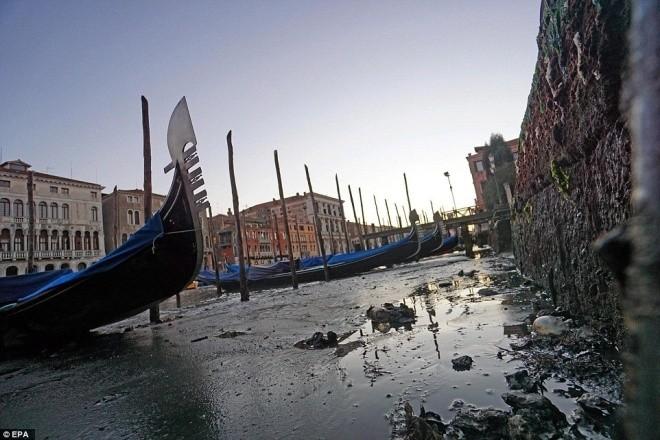 Thành phố nổi Venice có thể biến mất vì cạn nước - ảnh 8