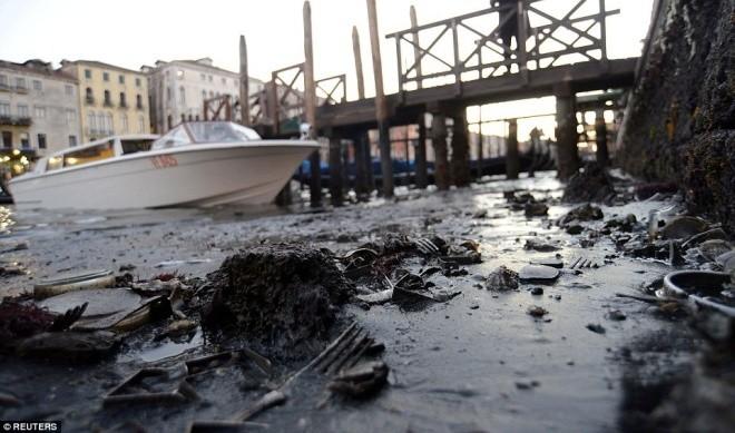 Thành phố nổi Venice có thể biến mất vì cạn nước - ảnh 9