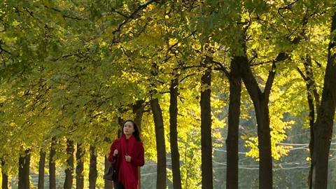 Hồng Đăng - Hồng Diễm 'tình cũ không rủ cũng tới' - ảnh 2