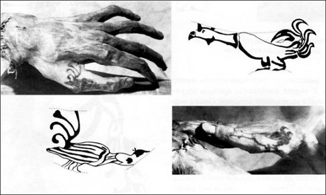 Hình xăm mãnh hổ trên xác ướp cặp đôi nghìn tuổi - ảnh 8