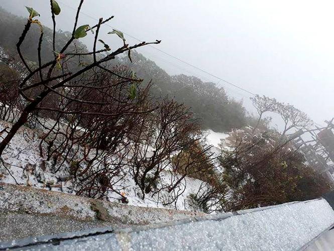 Bất ngờ xuất hiện mưa băng tại đỉnh Fansipan Sa Pa - ảnh 1