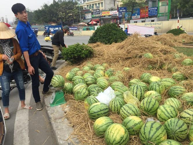 Bán hết 20 tấn dưa ủng hộ người dân Quảng Ngãi trong sáng 3/4 - ảnh 3