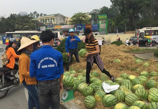Bán hết 20 tấn dưa ủng hộ người dân Quảng Ngãi trong sáng 3/4 - ảnh 5