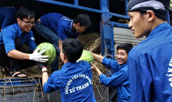 Sinh viên TP. HCM bán dưa hấu giúp nông dân Quảng Ngãi - ảnh 2
