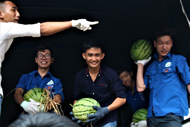 Sinh viên TP. HCM bán dưa hấu giúp nông dân Quảng Ngãi - ảnh 3