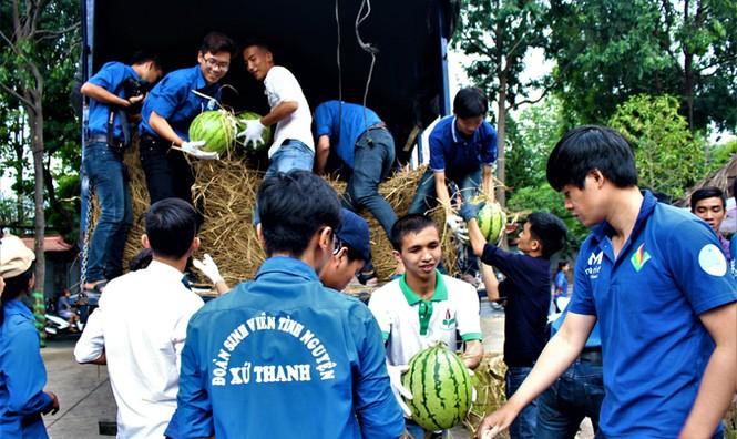 Sinh viên TP. HCM bán dưa hấu giúp nông dân Quảng Ngãi - ảnh 4