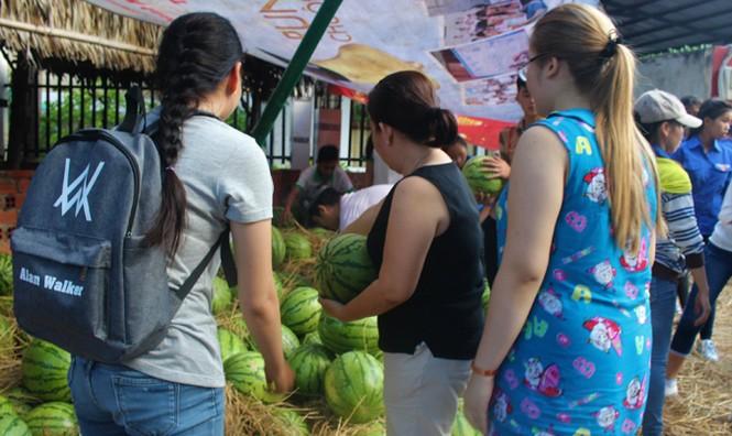 Sinh viên TP. HCM bán dưa hấu giúp nông dân Quảng Ngãi - ảnh 6