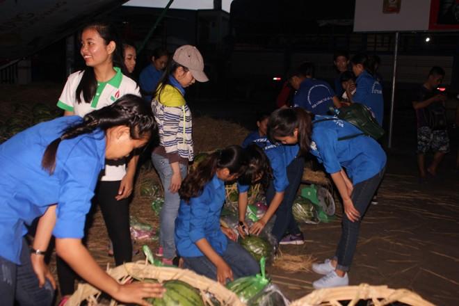 Sinh viên TP. HCM bán dưa hấu giúp nông dân Quảng Ngãi - ảnh 7