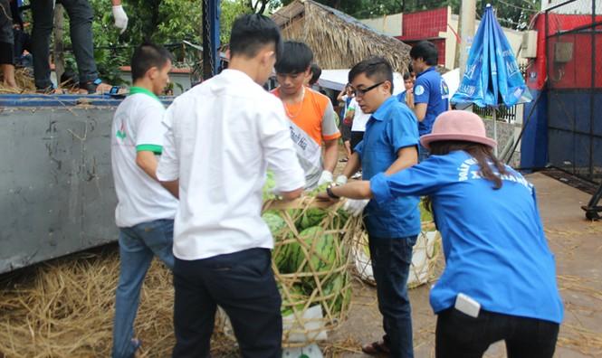 Sinh viên TP. HCM bán dưa hấu giúp nông dân Quảng Ngãi - ảnh 8