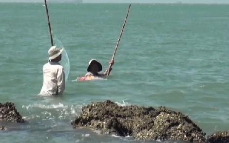 Theo chân ngư phủ 'ném' cá đối - ảnh 3