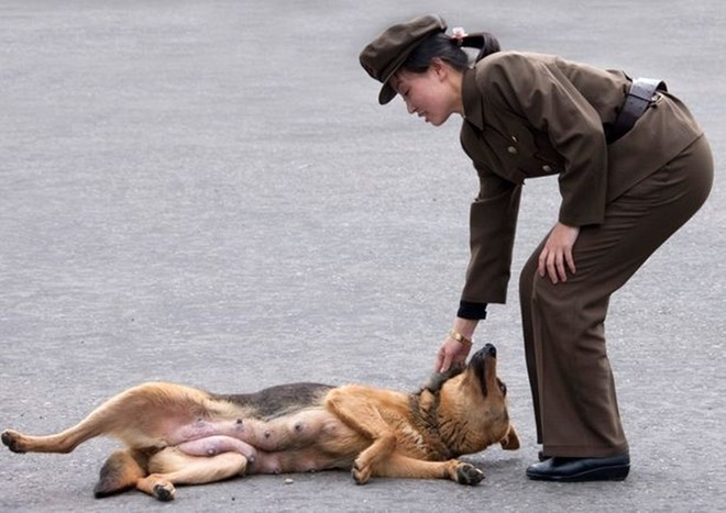 Binh sĩ Triều Tiên dưới góc nhìn của nhiếp ảnh gia Pháp - ảnh 7